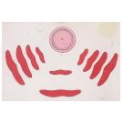 Vertekend beeld en het spel met de spiegel-anamorfosen - 2
