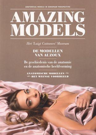 Anatomische modellen zijn geschikt voor voorlichting