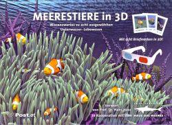 Meerestiere in 3D
