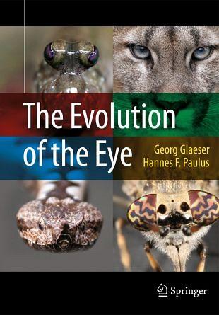 De evolutie van het oog in kleurrijke afbeeldingen