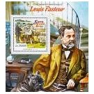 Microscopische ontdekking in werk van Louis Pasteur - 2