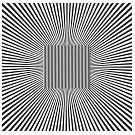 De kunst van het zien en de optische verwisseling - 4