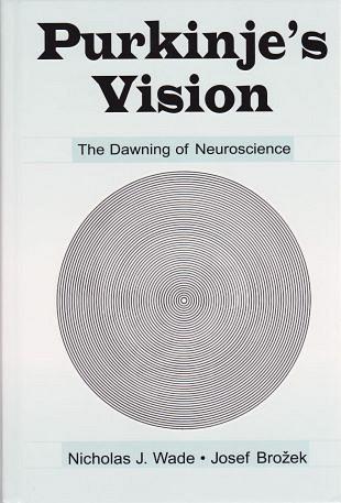 De neurowetenschap als een basis voor visuele perceptie