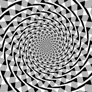 Fraser Spiraal Illusie