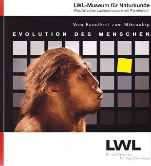 Van hakbijl tot microchip en de menselijke evolutie
