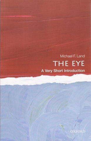 Compacte introductie over de werking van onze ogen