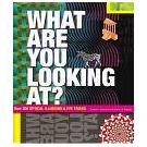 Meer dan 250 fascinerende illusies met gezichtsbedrog