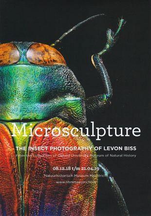 Fotografie van insecten door Britse fotograaf Levon Biss