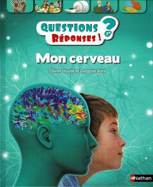 Onze hersenen lossen actief en op verzoek alle vragen op