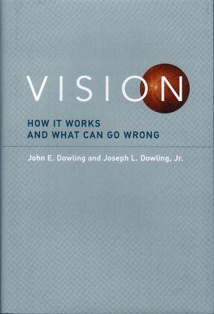 Bij onze visuele waarneming kan er flink wat fout gaan