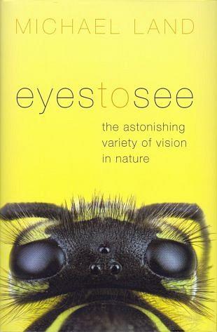 Geweldige variatie aan ogen voor de visuele waarneming (1)