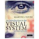 De organisatie en functies van ons visuele systeem