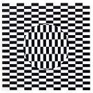 Bij zien en waarnemen is er gevaar voor optisch bedrog (2) - 2