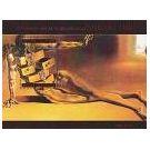 Dalí ontwikkelde zich in de 20e eeuw ook als kunsticoon (2) - 2