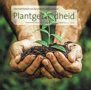 VN geeft 2020 aan als het jaar van Plantgezondheid
